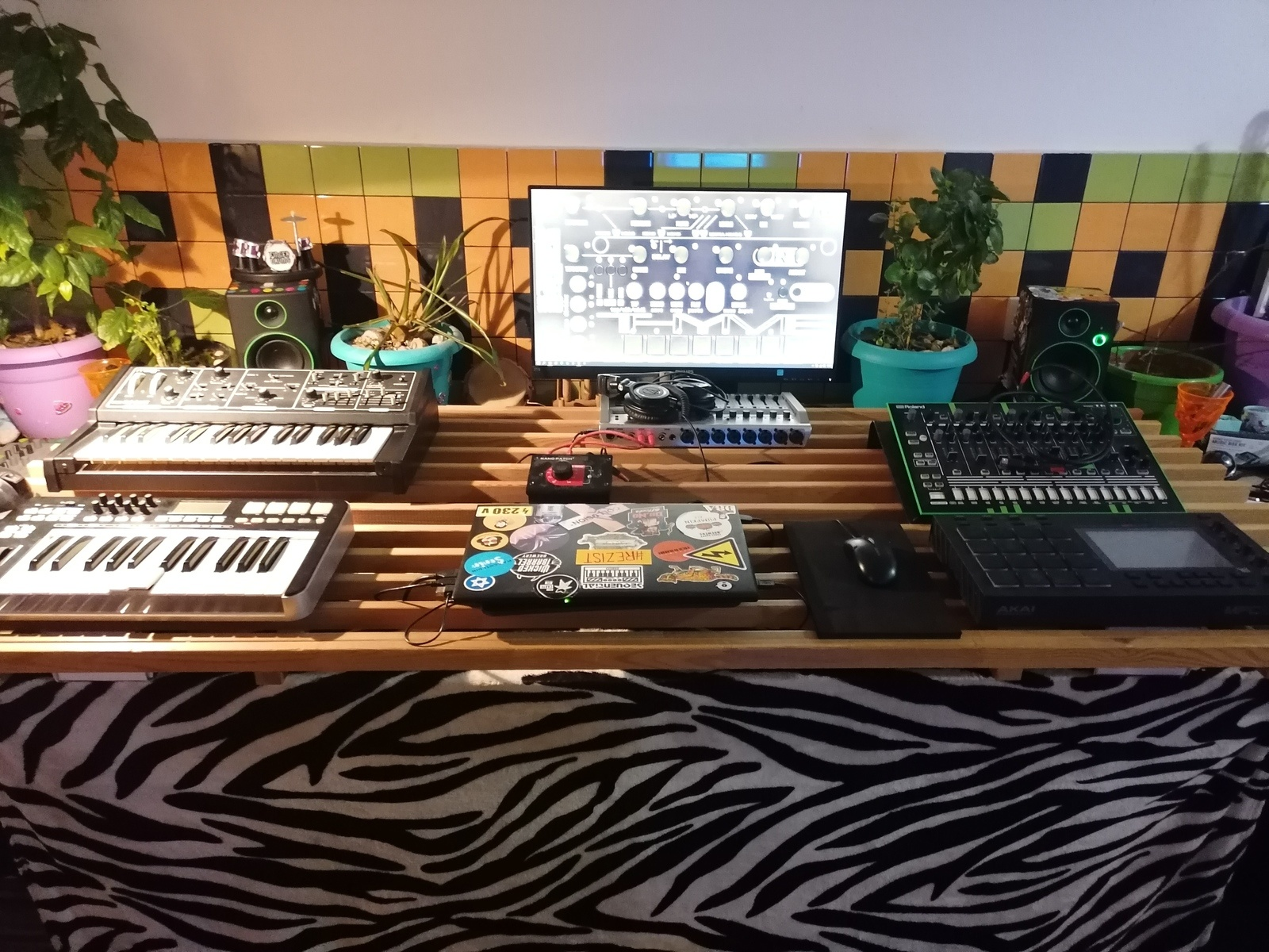 Photo of Moog Rogue and more gear