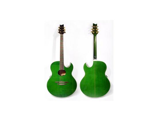 Ibanez Jem Acoustic Prototype
