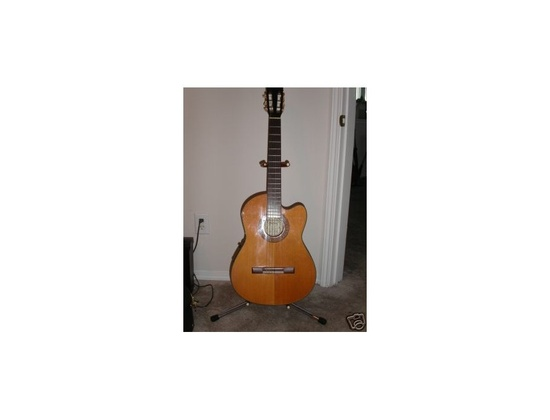 Washburn Classic Guitar WD-44s