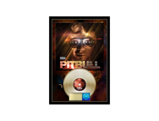 RIAA Gold Sales Award - Pitbull - Planet Pit
