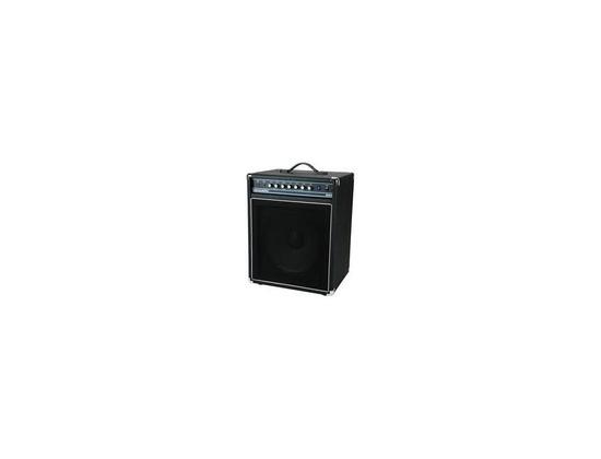 ACOUSTIC Bass Guitar Amp B100