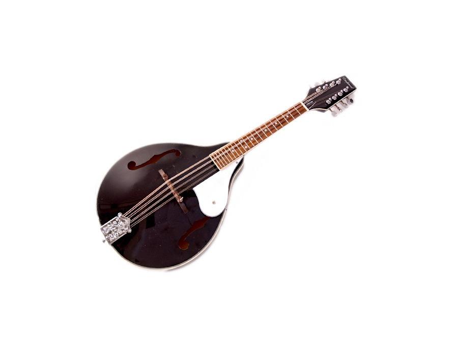 Tanglewood TWMTBKP A Style Mandolin