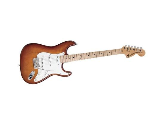 Fender American Nitro Satin Series Stratocaster