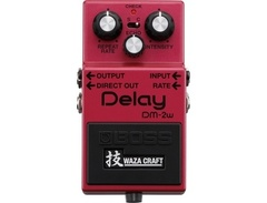 Boss dm 2w waza craft delay pedal s