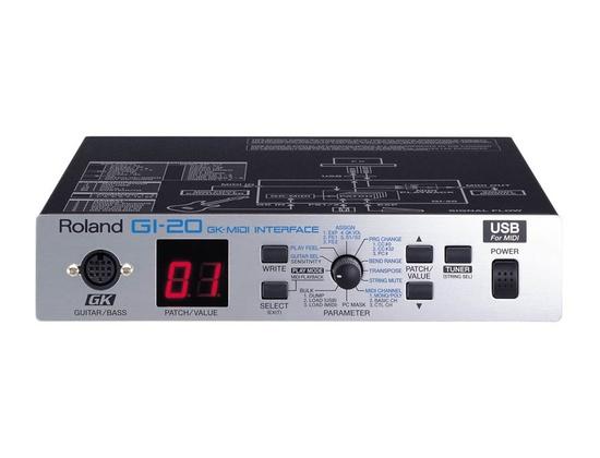 Roland GI-20