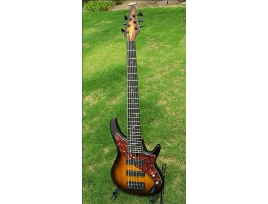 Aria Pro ii Avante Steve Bailey 6 String (fretted) Bass