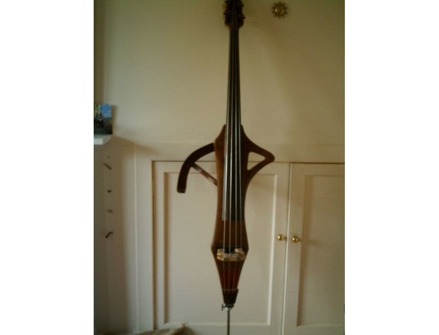 Mo Clifton Electric Upright Bass