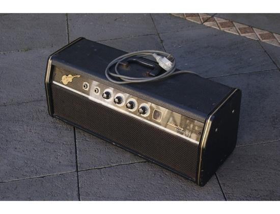 Goldentone Bassmaster 40W