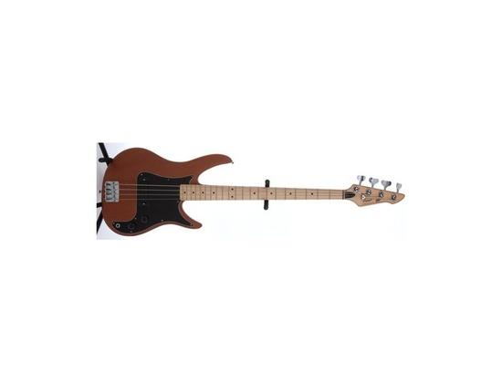 Peavey Patriot Bass