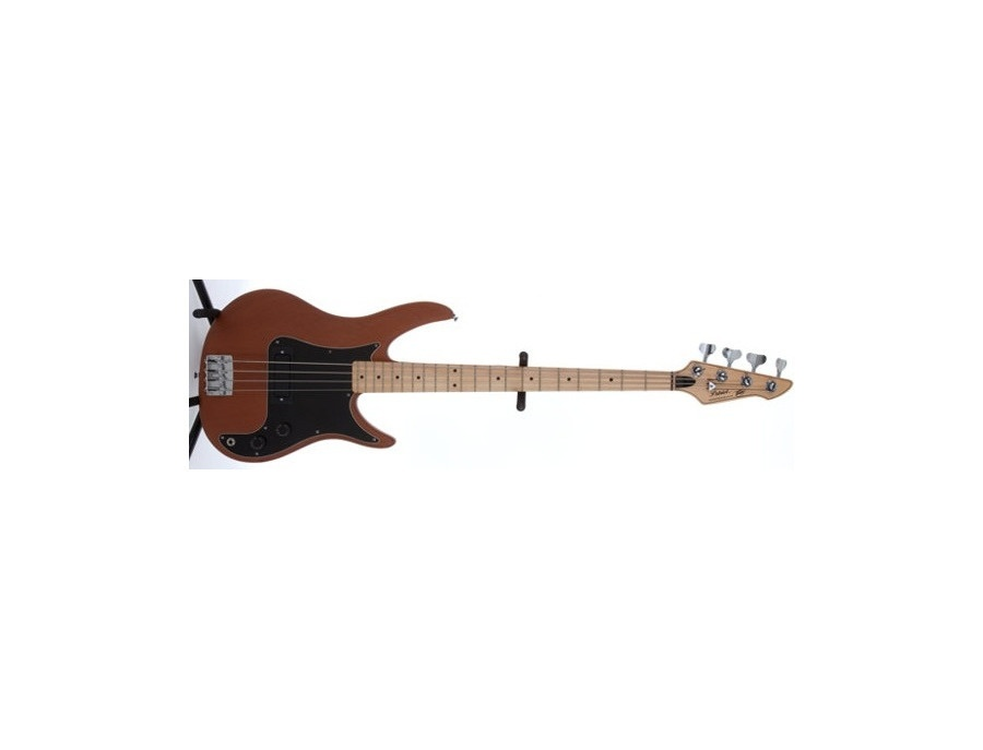 Peavey Patriot Bass