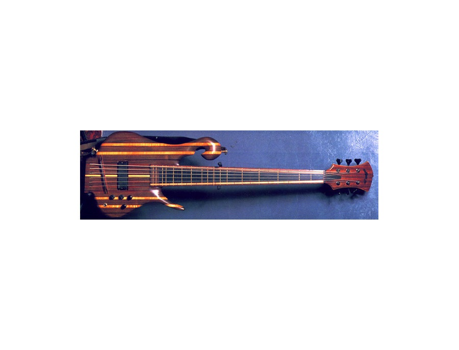 Carl thompson 6 string fretless rainbow bass xl