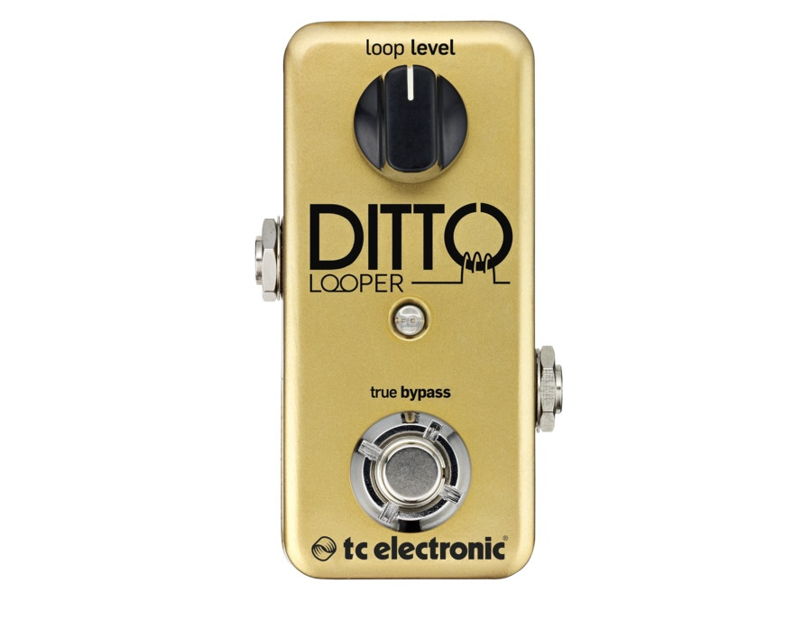 TC Electronic Ditto Looper Guitar Effects Pedal Limited Gold Edition