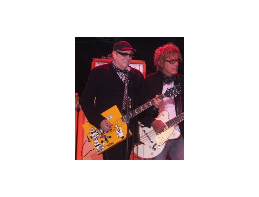 Hamer Rick Nielsen Box Guitar