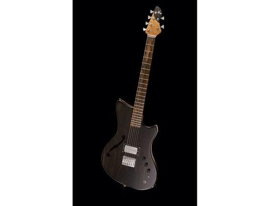 Alpher Instruments Custom Guitar