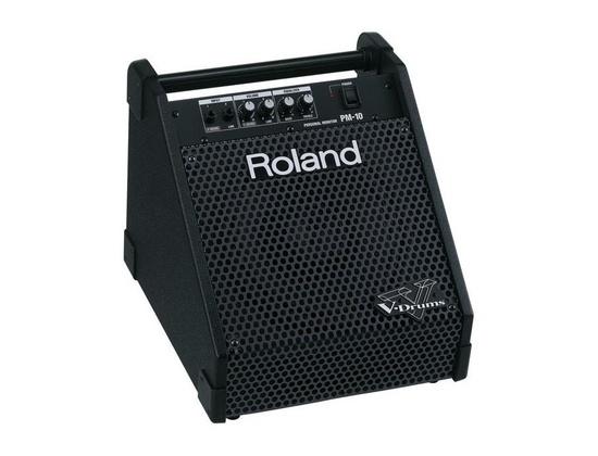 Roland PM10  Monitor