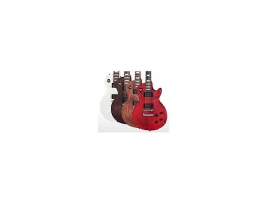 Gibson 2013 LPJ