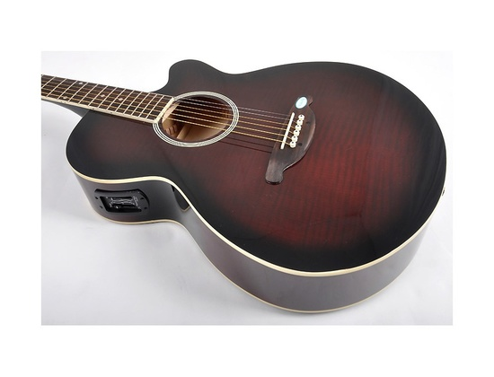 SX Electroacustic Guitar