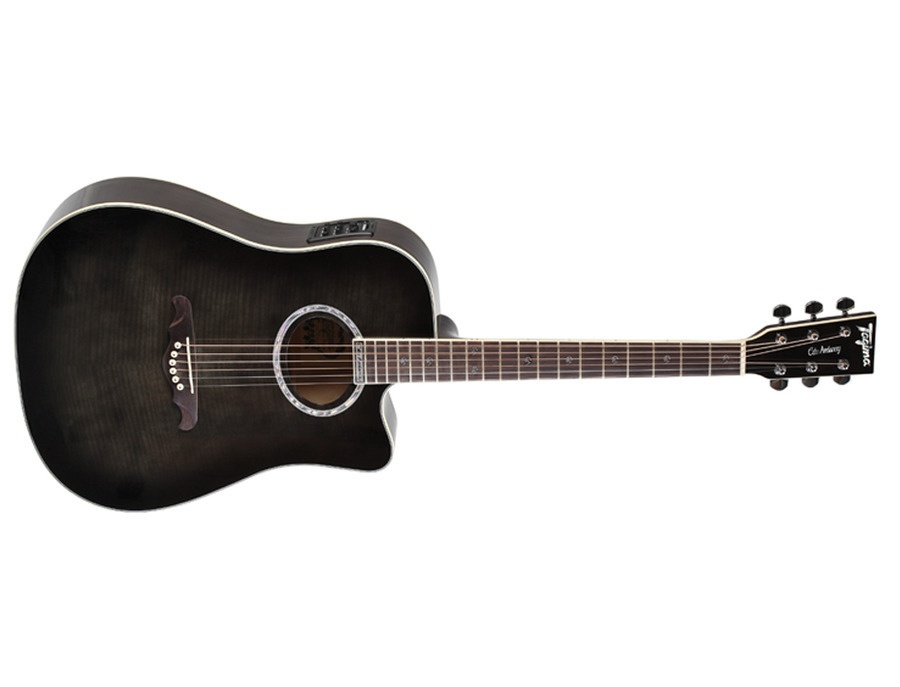 Tagima Edu Ardanuy Signature Acoutic Guitar\