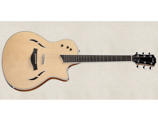 Taylor T5-S Electric Guitar