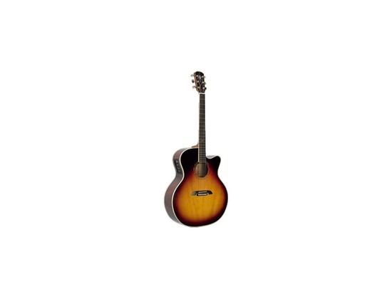 Alvarez Yairi JYM86CTS Acoustic/Electric Guitar