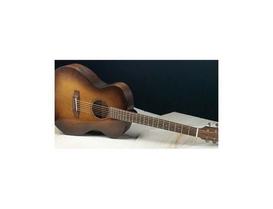 Bedell Earthsong Orchestra Acoustic Guitar
