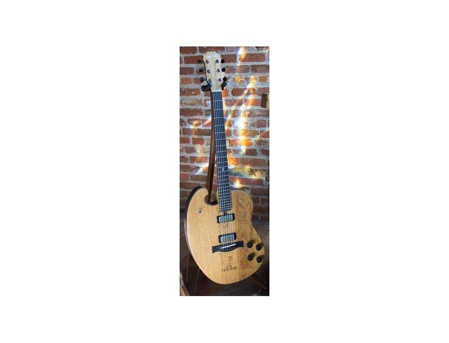 Bischoff Bon Iver's 1608 Custom Electric Guitar
