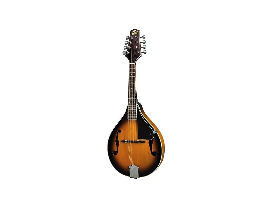Rogue rm 100a mandolin xl