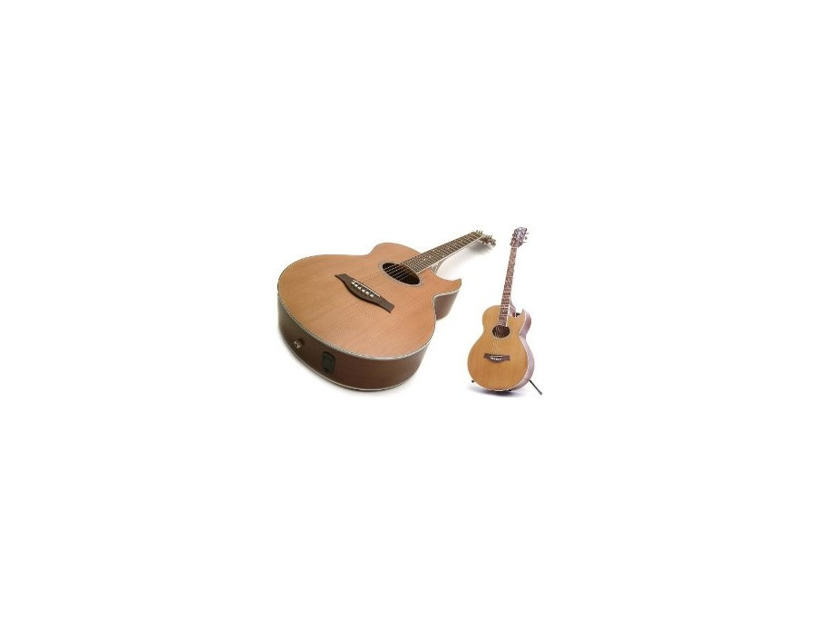 Richwood Artist Series rs-17c-ce