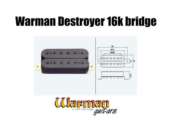Warman Guitars Destroyer