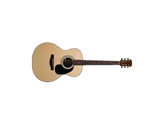 Farida R-16E Acoustic Guitar