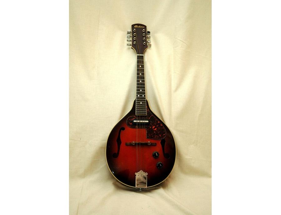 Antoria electrc mandolin