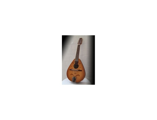 Wildwood Instruments Mandolin with pickup