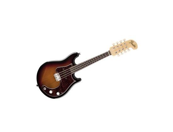 Fender Mando-Strat 8