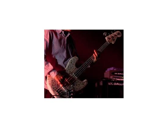 Fender Custom Butterfly Jazz Bass Damien Hirst Artwork