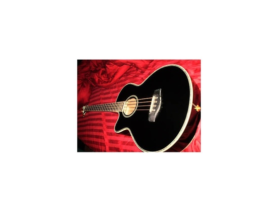 R.W. Jameson Acoustic/Electric Bass Left-handed