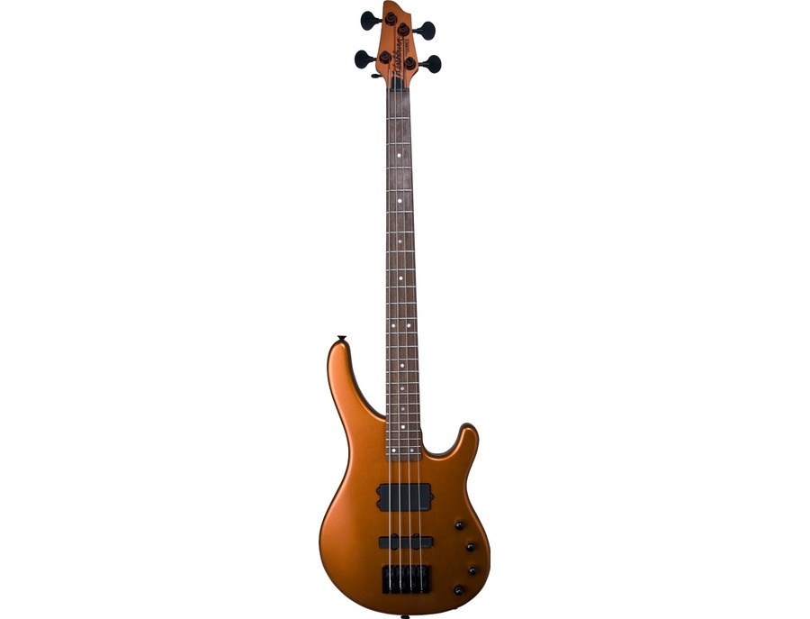 Washburn Stu Hamm signiture bass