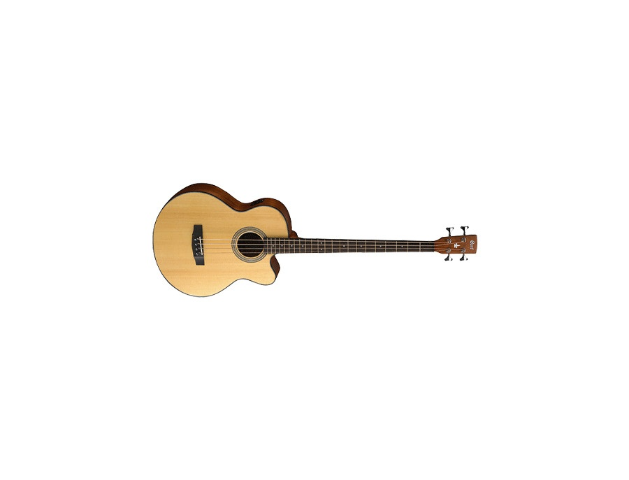 Cort SJB5F Electric Acoustic Bass