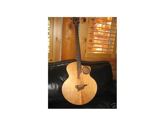 Taylor AB-3 Acoustic Electric Bass Guitar.