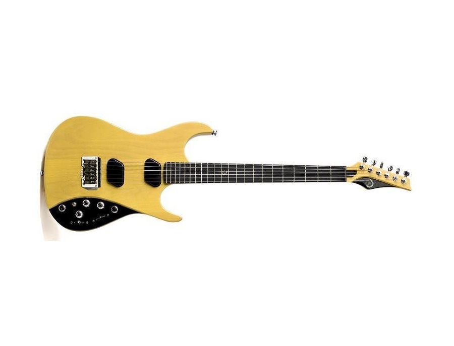 Moog E1 Electric Guitar (Butterscotch)