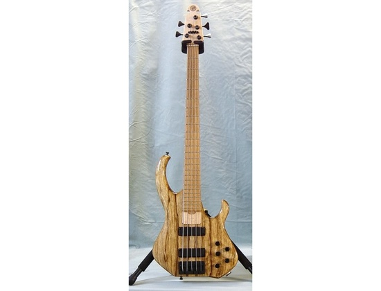 2006 Skjold Pro Series Deluxe 5 String Bass