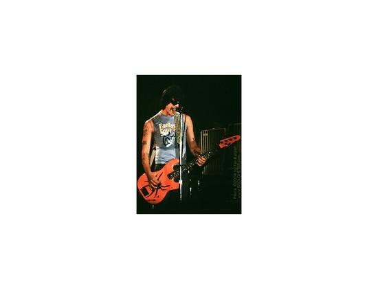 ESP Custom P-style Bass ``Spider´´