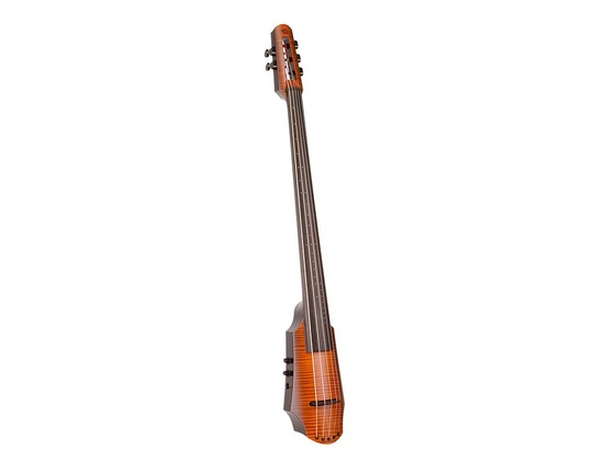 Ned Steinberger 5-String Electric Cello