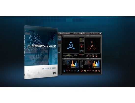 Native Instruments Reaktor 5 Player