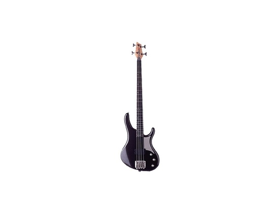 Washburn RB2000