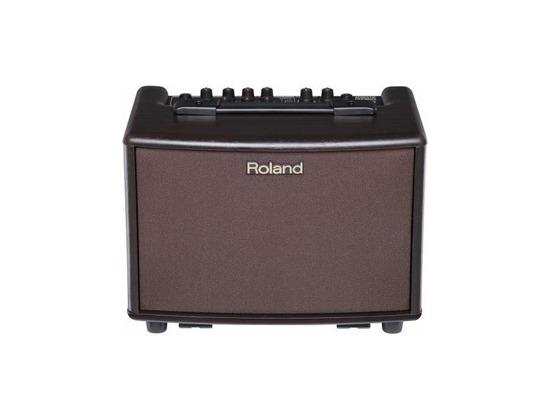 Roland AC 33RW
