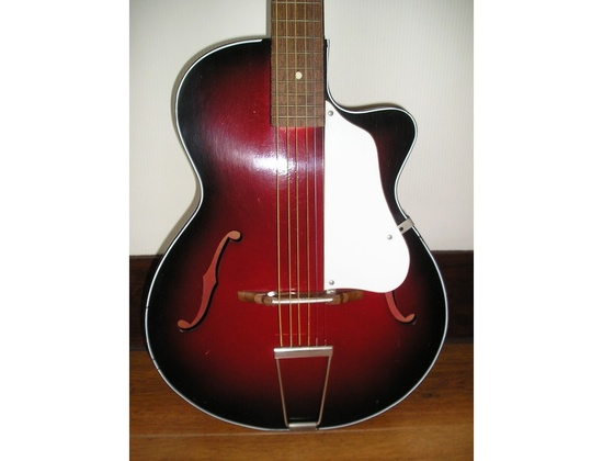Rosetti Foreign 1960's Archtop