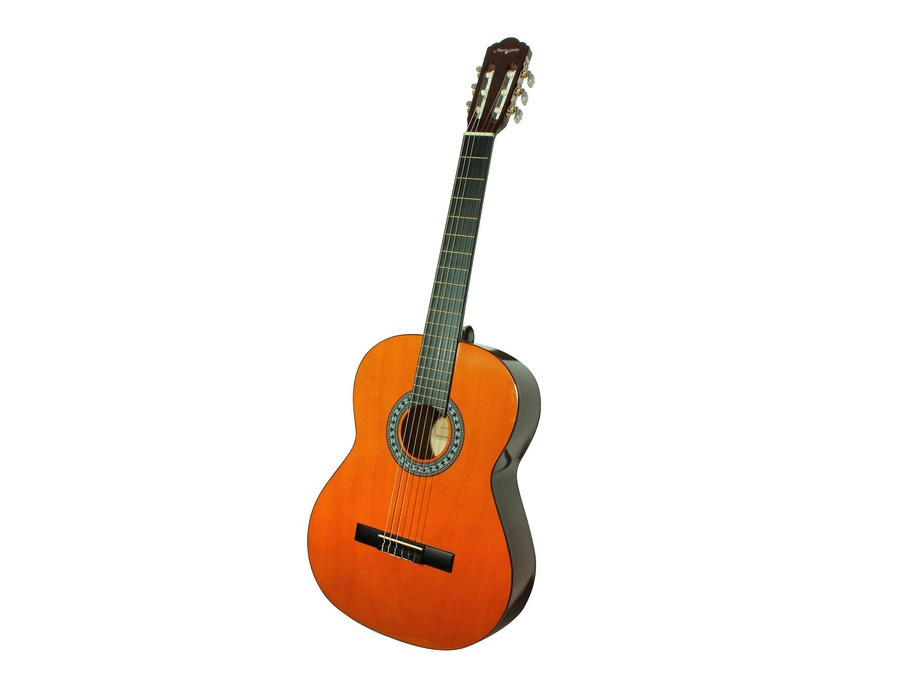 Martin Smith Full Size Classical Guitar
