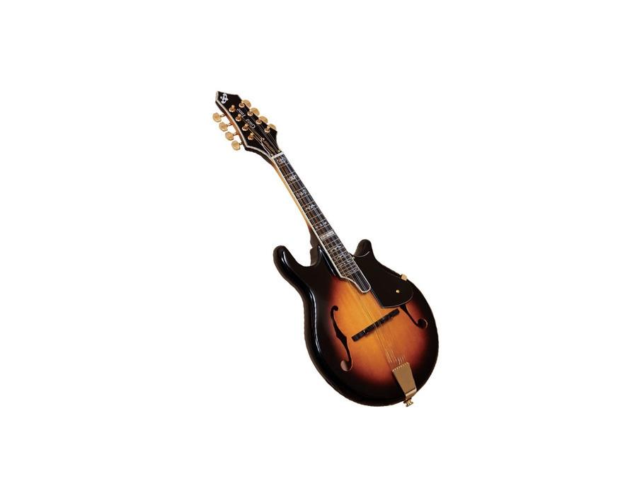 Goldtone gm 110 mandolin xl