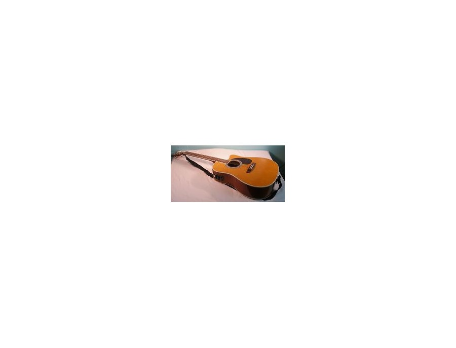 Esteban Acoustic Master Cutaway Series
