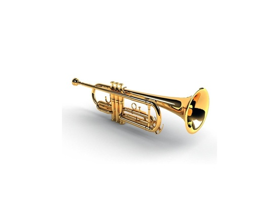 Flat Bb Ashton Brass Trumpet